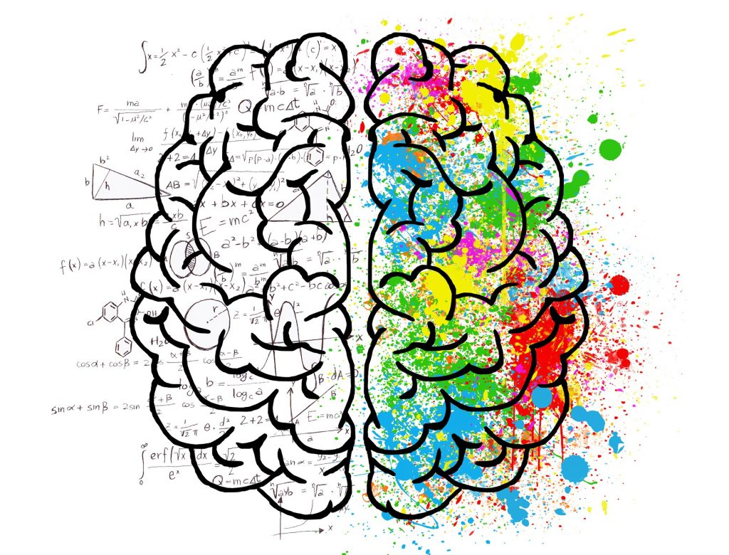 A brain drawing depicting mental model thinking through formulas on one side and colour splashes on the other