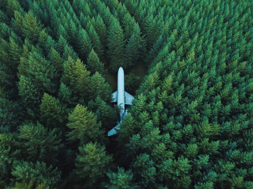 Overhead image of failed plane with large green trees growing over and around it
